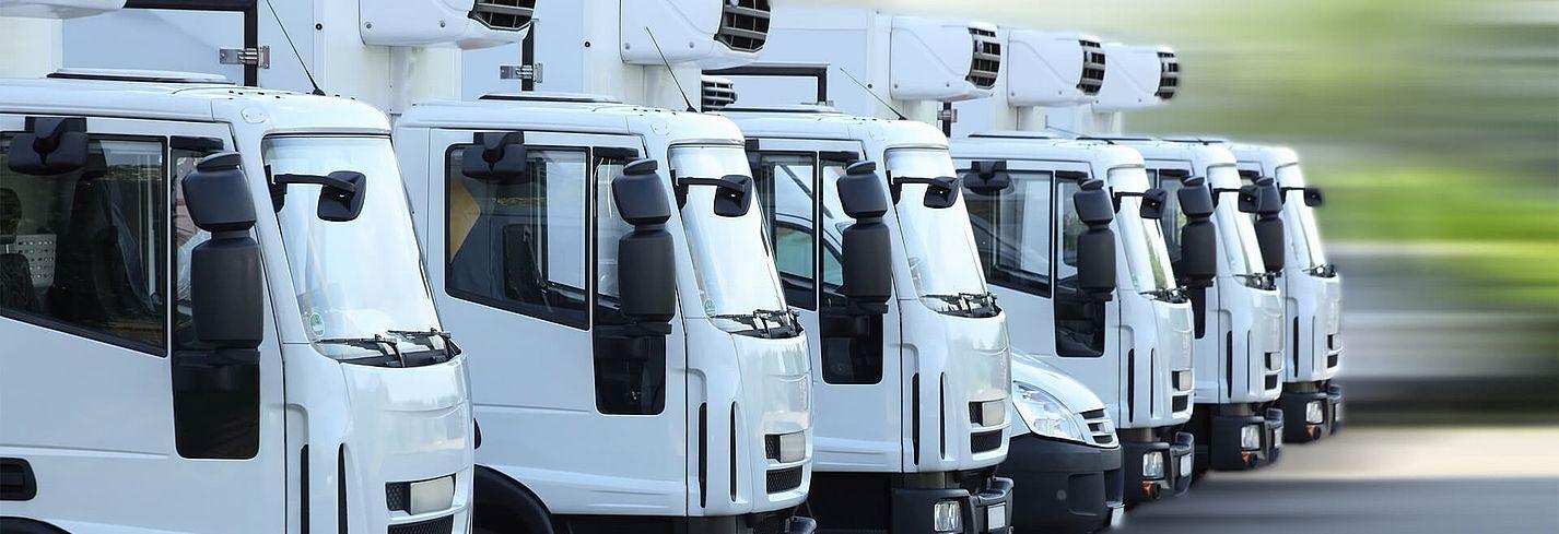Störk-Tronic Mess- und Regeltechnik, Regler, Regeleinheiten für Lebensmitteltechnik, Essenstransport, Transport Lebensmittel, Lebensmitteltransport, Kühllastwagen, Kühlung LKW.