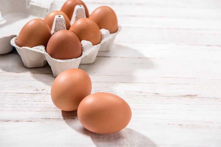 Störk-Tronic Mess- und Regeltechnik, Regler, Regeleinheiten für Lebensmitteltechnik, Eier, Sterilisation.