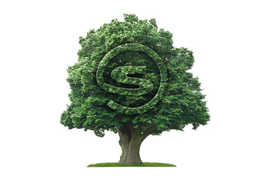 Störk-Tronic Umweltmanagement, umweltschonende Prozesse, grün, ökologisch, nachhaltig.